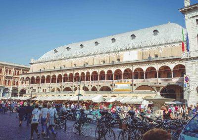 plaza--ts-2015-11-20T11_11_13_800Z