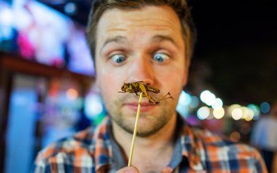 """""""Locuste sapore bacon"""", 5 motivi per mangiare insetti"""""""
